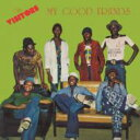 Artist Name: V - 【送料無料】 Visitors / My Good Friends 輸入盤 【CD】