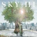 【送料無料】 SKY-HI / 未定 【Music Video盤】 【CD】