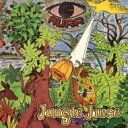 Joe Kemfa / Jungle Juice 【LP】
