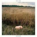 Sinai Vessel / Brokenlegged 【LP】