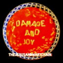 Artist Name: J - 【送料無料】 Jesus&Mary Chain ジーザス&メリーチェーン / Damage & Joy 【CD】