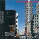 艺人名: N - 松岡直也 マツオカナオヤ / Fall On The Avenue 〜見知らぬ街で 【SHM-CD】