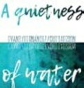 Artist Name: P - 【送料無料】 Peter Evans / Agusti Fernandez / Mats Gustafsson / Quietness Of Water 輸入盤 【CD】