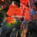Artist Name: R - 橋爪亮督 / Incomplete Voices 【CD】