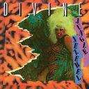 艺人名: D - Divine (Dance) / Jungle Jezebel 輸入盤 【CD】