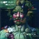 艺人名: I - 【送料無料】 Igor Tavan / Suite Frenetica 輸入盤 【CD】