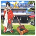 藝人名: Z - ZEBRAHEAD ゼブラヘッド / Stupid Fat Americans 【CD】