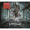 Artist Name: M - MR.BIG ミスタービッグ / Defying Gravity 【CD】