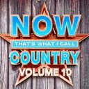 Artist Name: N - 【送料無料】 NOW(コンピレーション) / Now That's What I Call Country 10 輸入盤 【CD】