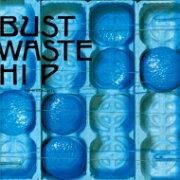 【送料無料】 THE BLUE HEARTS ブルーハーツ / BUST WASTE HIP (2枚組アナログレコード)【初回生産限定】 【LP】