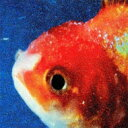 Vince Staples / Big Fish Theory 輸入盤 【CD】