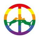 Hype Williams / Rainbow Edition (180グラム重量盤) 【LP】