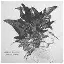 艺人名: A - 【送料無料】 Adrian Crowley / Dark Eyed Messenger 輸入盤 【CD】