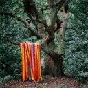 艺人名: J - James Holden / Animal Spirits / Animal Spirits 輸入盤 【CD】