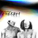Front Bottoms / Going Grey 【LP】