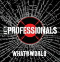 藝人名: P - Professionals / What In The World 輸入盤 【CD】