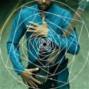 藝人名: T - Tony Macalpine トニーマカパイン / Death Of Roses: 薔薇に死す 【SHM-CD】