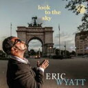 Artist Name: B - 【送料無料】 Benito Gonzalez / Look To The Sky 輸入盤 【CD】