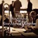艺人名: D - Dusko Goykovich ダスコゴイコビッチ / 5ive Horns & Rhythm 【CD】