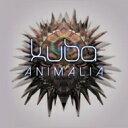 藝人名: K - 【送料無料】 Kuba / Animalia 輸入盤 【CD】