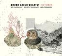Artist Name: B - 【送料無料】 Bruno Calvo / Outlines 輸入盤 【CD】