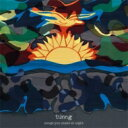 Artist Name: T - 【送料無料】 Tunng / Songs You Make At Night 輸入盤 【CD】