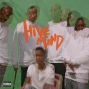 The Internet / Hive Mind (ブラックヴァイナル仕様 / 2枚組アナログレコード) 【LP】