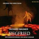 作曲家名: Wa行 - 【送料無料】 Wagner ワーグナー / Siegfried(Werkeinfuhrung) : Detlev Eisinger(P) (2CD) 輸入盤 【CD】