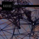 藝人名: R - Radius (Dance) / Interpolation Tapes (Restoration 3 / 3) 輸入盤 【CD】
