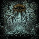 Artist Name: O - Odious Construct / Shrine Of The Obscene 輸入盤 【CD】