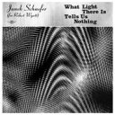 Artist Name: J - Janek Schaefer / What Light There Is Tells Us Nothing 輸入盤 【CD】
