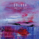 Artist Name: A - Anat Fort / Colour 輸入盤 【CD】