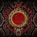 Artist Name: W - 【送料無料】 Whitesnake ホワイトスネイク / Flesh & Blood (Deluxe Edition)(CD+DVD) 輸入盤 【CD】