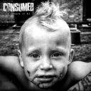 藝人名: C - Consumed / Decade Of No 【CD】