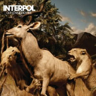Interpol <strong>インターポール</strong> / Our Love To Admire 輸入盤 【CD】