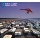 Pink Floyd ピンクフロイド / Momentary Lapse Of Reason (Remixed Updated 2019) 輸入盤 【CD】