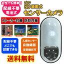 【送料無料】microSD式センサーカメラ SD1000 [ 防犯カメラ 監視カメラ 防犯 ペット ガレージ 簡単 女性 SDカード ]