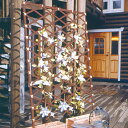 伸縮ネットトレリス 1020B ブラウン【アイリスオーヤマ・園芸・ガーデン・ガーデニング・家庭菜園・
