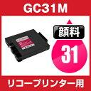 Gc31-m-gan