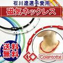 【ポイント10倍】【送料無料】 コラントッテ(Colantot