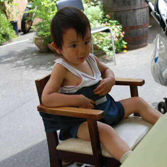 寶寶帶帶椅 / 高腳椅帶