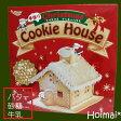 手作りお菓子キット クリスマス クッキー クッキーハウス 手作り お菓子キット プレゼント パーティに お菓子の家  クリスマス 10P03Dec16