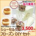メーカーより直送 「SWEETS CERCLE シューセルクル フローズンDIYセット」北海道 お菓子 シュークリーム ギフト 送料込 送料無料