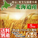"""小麦""""春よ恋50%以上使用""""香麦(コウムギ)小袋(5kg)【材料 小麦粉 パン お菓子 料理】【lucky】ラッキーシール対象【常】"""