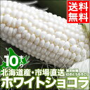 【お届け日時指定OK】北海道産 送料無料 とうきび トウモロコシ ピュアホワイト 白いとうもろこし 雪の妖精