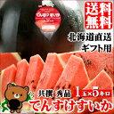 【送料無料】北海道産 でんすけすいか(秀品 M 約5kg)【お中元/夏ギフト/果物/フルーツ】 - ギフト&グルメ北海道