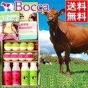お歳暮 スイーツ ギフト送料無料 BOCCA 牧家 乳製品詰め合わせ(2)【北海道 ギフト ス