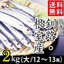 今季出荷開始送料無料 北海道産 サンマ 2キロ(大:12尾〜...