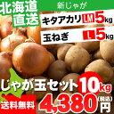 北海道産 じゃがいも じゃが玉セット キタアカリ5kg(LMサイズ)&玉ねぎ5kg(Lサイズ)合計10kg【お届け日時指定可 ジャガイモ きたあかり キタアカリ 北海道産野菜 イモ 玉ねぎ セット】