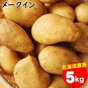 【11/25限定!ポイント12倍(要条件確認)】今季出荷開始中!新じゃが じゃがいも 送料無料 北海道産 メークイン【M-2L混合】1箱5キロ入り【5kg 5キロ 5kg メークイン メイクイン めーくいん おいも いも 芋 薯 ジャガイモ 北海道 秋野菜 野菜】